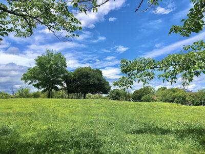 [高塚地区公園]ピクニックに最適‼みどり豊かな公園
